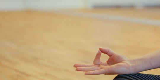 Yoga Hand Pose